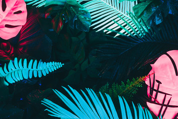 Wall Mural - Creative fluorescent color layout made of tropical leaves. Flat lay neon colors. Nature concept.