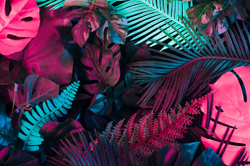 Creative fluorescent color layout made of tropical leaves. Flat lay neon colors. Nature concept. Wall mural