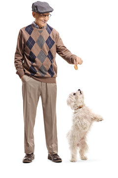 Senior man giving a treat to a little white dog standing on back paws