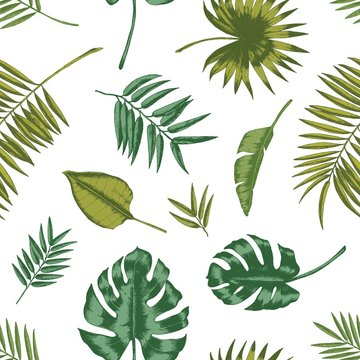Hawaiian seamless pattern with tropical foliage on white background