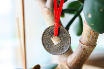 Chinese coin on a money tree Wall mural
