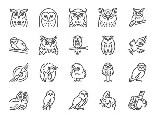 Owl line icon set. Included icons as bird, beak, claw, fly, hunt and more.