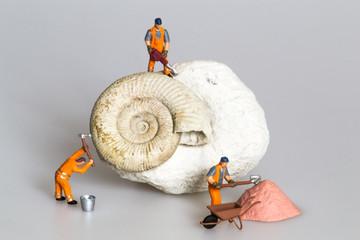 Scavo paleontologico