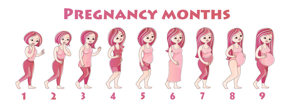 Infographics girls pregnancy by month.Many young girls are standing one behind other, concept of stages of pregnancy, sketch color illustration, vector