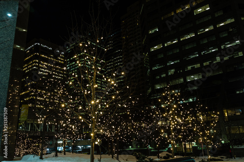Christmas In Calgary Canada.Christmas Lights Twinkle In The City Calgary Alberta