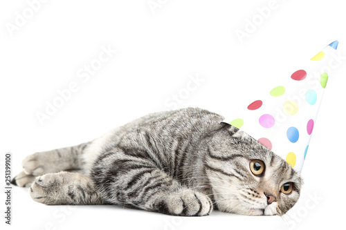 Cute Cat With Birthday Cap Lying On White Background Stock