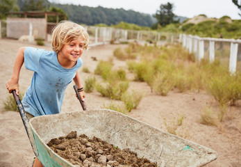Smiling boy pushing wheelbarrow with horse dung