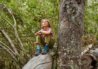 Chile, Puren, Nahuelbuta National Park, boy sitting on a tree in forest looking up