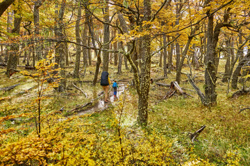 Argentina, Patagonia, El Chalten, mother and son hiking in autumnal forest