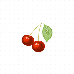 cherry isolated illustration