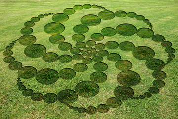 Concentric circles spirals encrypted symbols fake crop circle in the meadow  Fotomurales