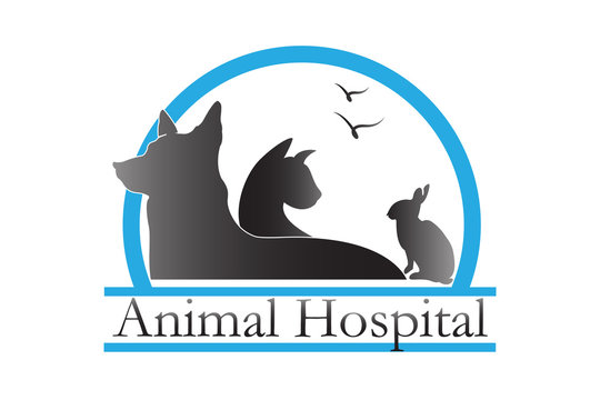 Logo pets veterinary business card