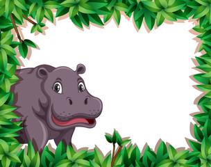 Hippopotamus in nature frame