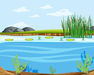 A water lake scene