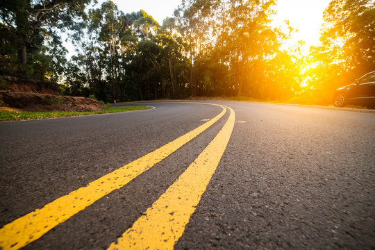 Sunny forest asphalt road curve with marking lines at sunset time