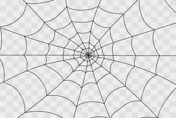 Cobweb isolated on white