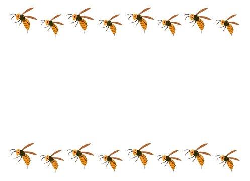 スズメバチのフレーム