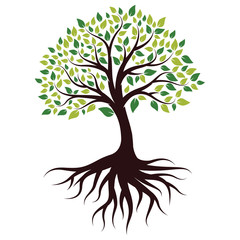 Vector Illustration for Green Tree with Roots