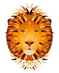 Lion portrait, head. Cartoon style. White background
