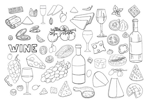 Bid hand drawn set with wine, different cheese, grape, vegetables isolated on white background. Vector doodle wine outline set