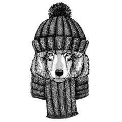 Wolf Dog Wild animal Cool animal wearing knitted winter hat. Warm headdress beanie Christmas cap for tattoo, t-shirt, emblem, badge, logo, patch
