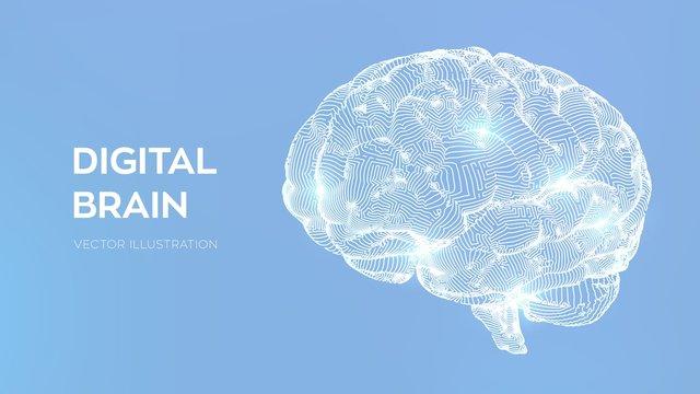 Brain. Digital brain. 3D Science and Technology concept. Neural network. IQ testing, artificial intelligence virtual emulation science technology. Brainstorm think idea. Vector illustration.