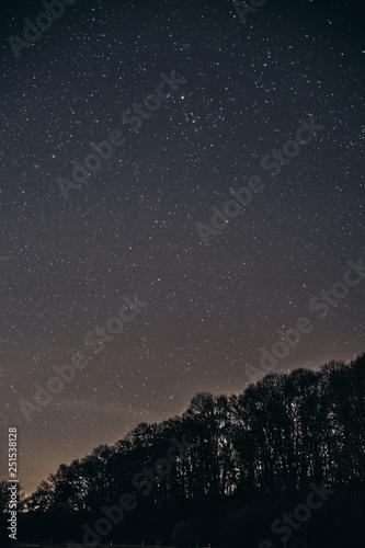 starry night sky with stars