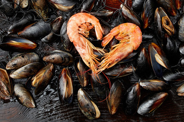 Shrimp in the shape of a heart on the background of mussels