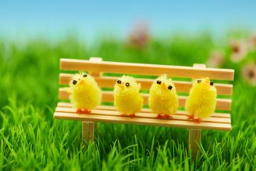 Niedliche Küken auf Bank als Ostern Dekoration