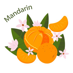Vector greeting card design with tangerines, leaves and flowers