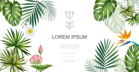 Wall Mural - Realistic Tropical Plants Floral Concept