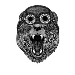Cute animal wearing motorcycle, aviator helmet Bear Hand drawn picture for tattoo, t-shirt, emblem, badge, logo, patch