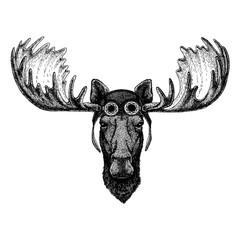 Cute animal wearing motorcycle, aviator helmet Moose, elk Hand drawn illustration for tattoo, emblem, badge, logo, patch t-shirt