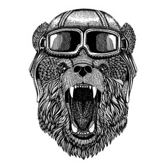 Animal wearing aviator helmet with glasses. Vector picture. Bear Hand drawn picture for tattoo, t-shirt, emblem, badge, logo, patch
