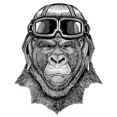 Animal wearing aviator helmet with glasses. Vector picture. Gorilla, monkey, ape Frightful animal Hand drawn image for tattoo, emblem, badge, logo, patch