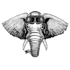 Animal wearing aviator helmet with glasses. Vector picture. African or indian Elephant Hand drawn illustration for tattoo, emblem, badge, logo, patch, t-shirt