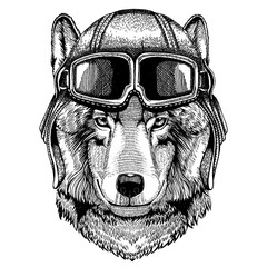 Animal wearing aviator helmet with glasses. Vector picture. Wolf, dog. Hand drawn image for tattoo, emblem, badge, logo, patch
