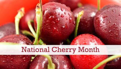 National Cherry Month illustration. Healthy summer fruit. Dewy fresh cherries. February is National Cherry Month