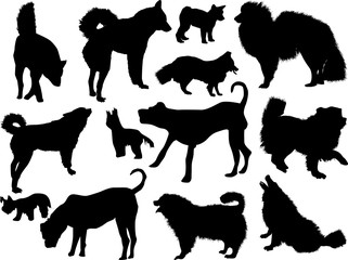 set of thirteen dogs silhouettes isolated on white