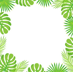 Tropical leaves border isolated green leaves of palm and monstera. Vector botanical frame of exotic plants, spare place for text, stylish botanical foliage