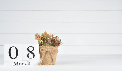 Womens day concept, happy womens day, international women's day. Brown plant in a pot with March 8 text wooden block calendar on white wooden background.