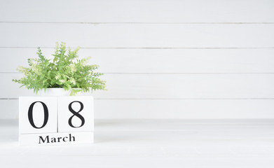 Womens day concept, happy womens day, international women's day. Green plant in a pot with March 8 text wooden block calendar on white wooden background.