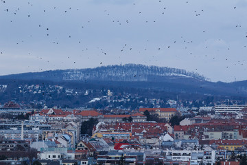 Vienna, Austria. Winter. Panorama of the city from the Schönbrunn Palace