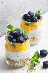 Glass of yogurt with blueberries and mango mousse on a white background, close up shot