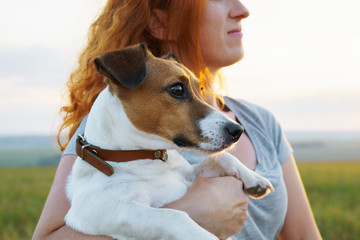 A young red-haired woman holds a Jack Russell Terrier breed dog and looks into the distance at a bright sunset sky and a beautiful green field in summer. Summer family vacation. Pet. Green field