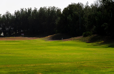 Golf course covered with golfing balls