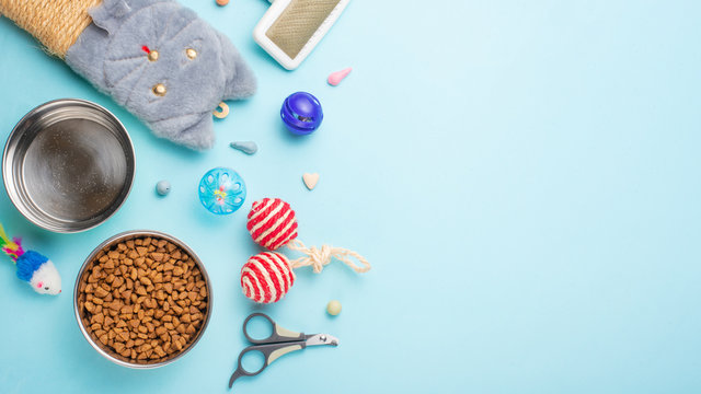 Pets and cute animals, pets, cute cats, food and accessories for cat's life, Flat lay, space for a dresser, on a blue background. Zoomarket, pet shop