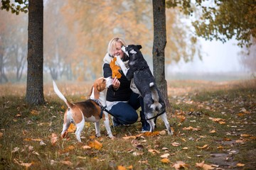 Young woman playing with her dogs in park