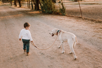 Boy with dog walking outdoors