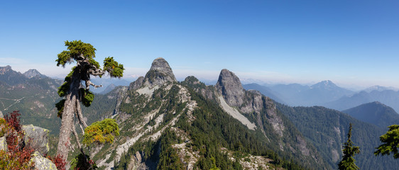 Beautiful panoramic view of Canadian Mountain Landscape during a vibrant summer day. Located on Howe Sound Trail near Vancouver, BC, Canada.